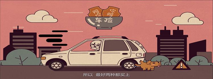 车险app排行