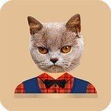 快手猫头贴纸软件
