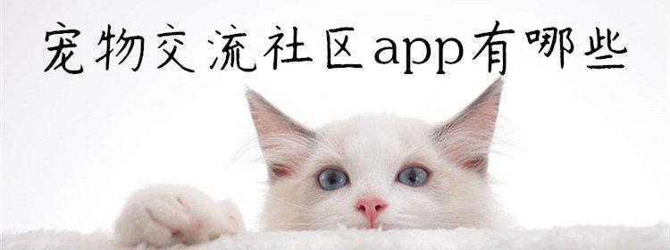 宠物交流社区app有哪些