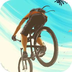 真实自行车