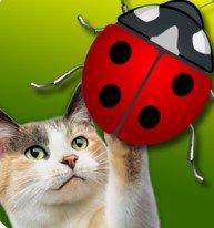 Friskies JitterBug(貓咪玩的游戲)