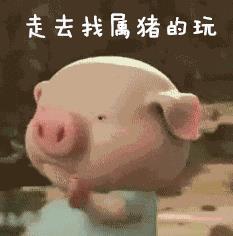 抖音走去找属猪的玩表情包