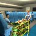 飞机空姐模拟器