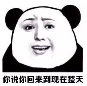 熊猫头放假在家生活照表情包