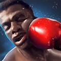 中美拳擊挑戰賽