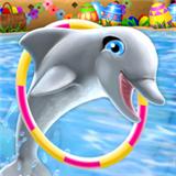 海豚训练营安卓版