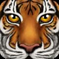 終極野生動物模擬器手機版
