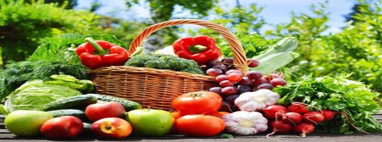 农产品批发软件
