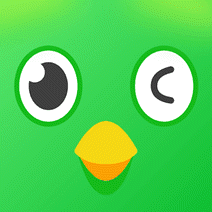 闲巢app