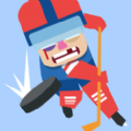 Hockey Fighter