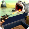 鯊魚獵人2020