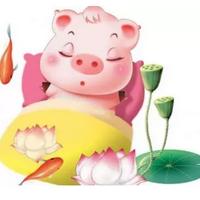 福祿豬軟件