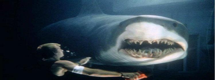 鯊魚吞噬人類的游戲合集