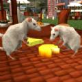 流浪的老鼠最新版