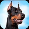 杜賓狗模擬器手機版