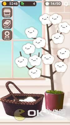 木棉花进化史图2