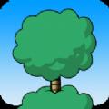 种树钻天空