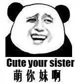 熊猫头英语表情包