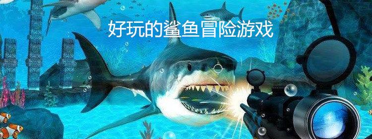 好玩的鯊魚冒險游戲