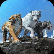 荒野老虎生存