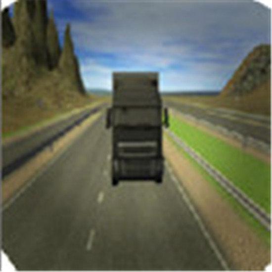 真正的卡车驾驶