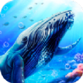 藍鯨海洋生物模擬