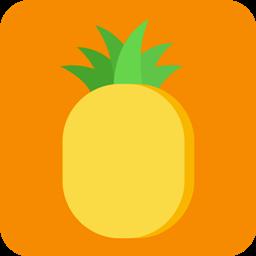 菠萝记事本