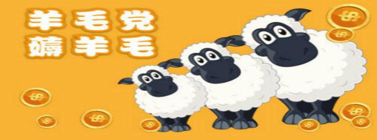 2019最新薅羊毛平臺