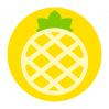 大菠萝贷款