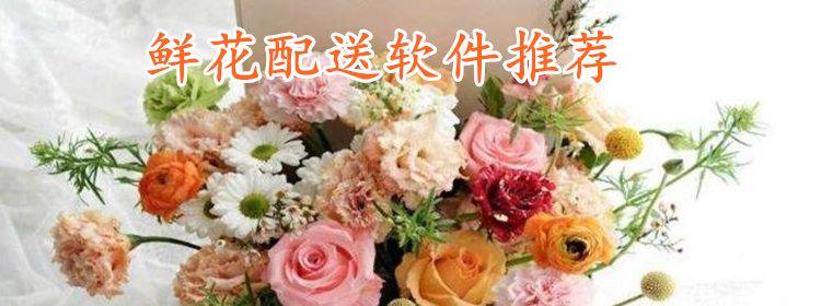 鲜花配送软件推荐