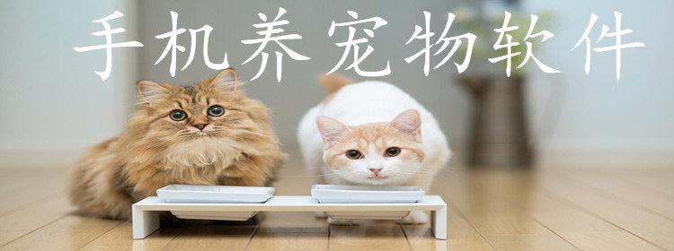 手机养宠物软件