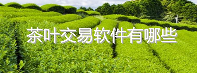 茶叶交易软件有哪些