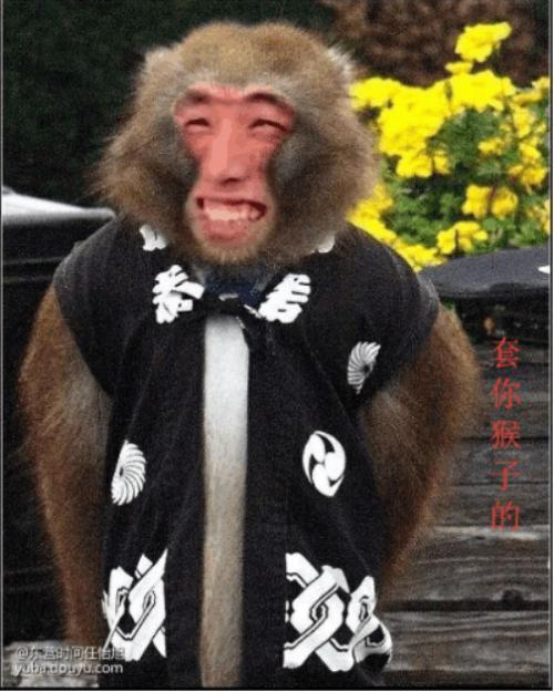 旭旭宝宝大马猴表情包