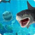 大白鲨的生活