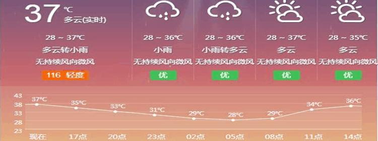 可以实时查询天气的软件
