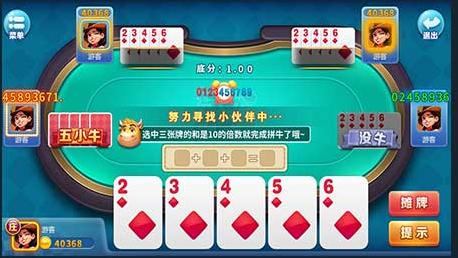 龙冠斗牛王 v1.0 第3张