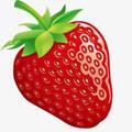 草莓基地app