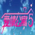 愛情公寓5互動游戲