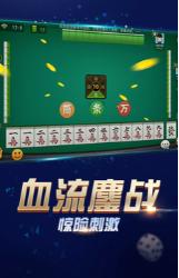 冮苏扬州哈灵麻将 v1.0 第3张