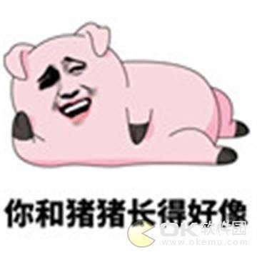 愛情公寓5豬豬公寓表情包圖3