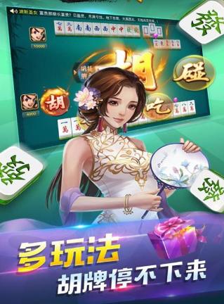 乐乐安徽麻将安庆版 v1.0.2 第3张