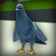 鴿子狂暴模擬器手機版