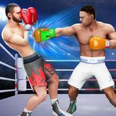 3D拳拳冠軍