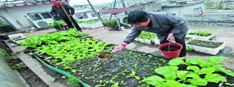 可以学习种植蔬菜的软件