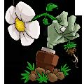 植物大战僵尸95版中文版