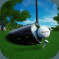 完美揮桿高爾夫