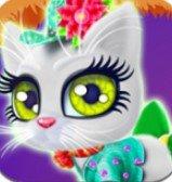 猫咪爱打扮
