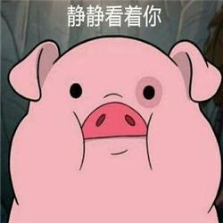 粉紅豬帶字表情包