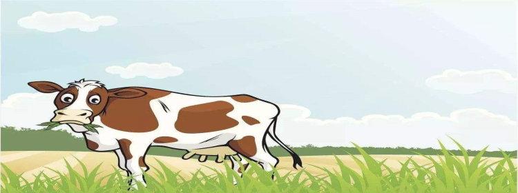 养牛赚钱的软件