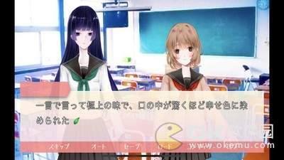 妻子模拟器2中文版